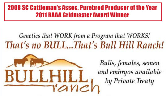 Bullhill Red Angus Ranch - Red Angus Cattle in Gray Court, SC